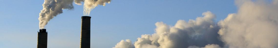 Aberration environnementale:  brûler du bois américain pour produire de l'électricité en Guadeloupe